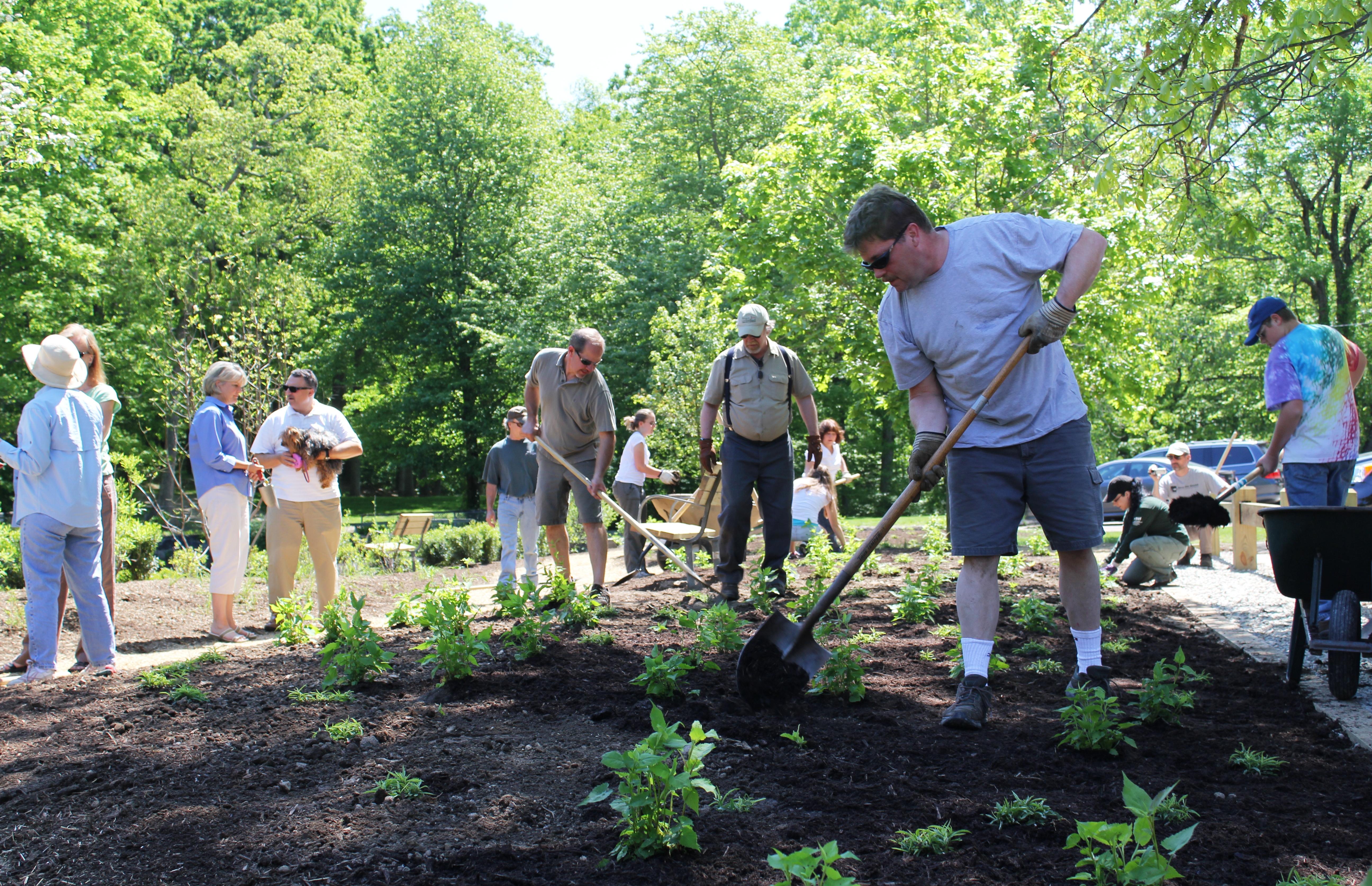 Volunteers planting along the Pequonnock River