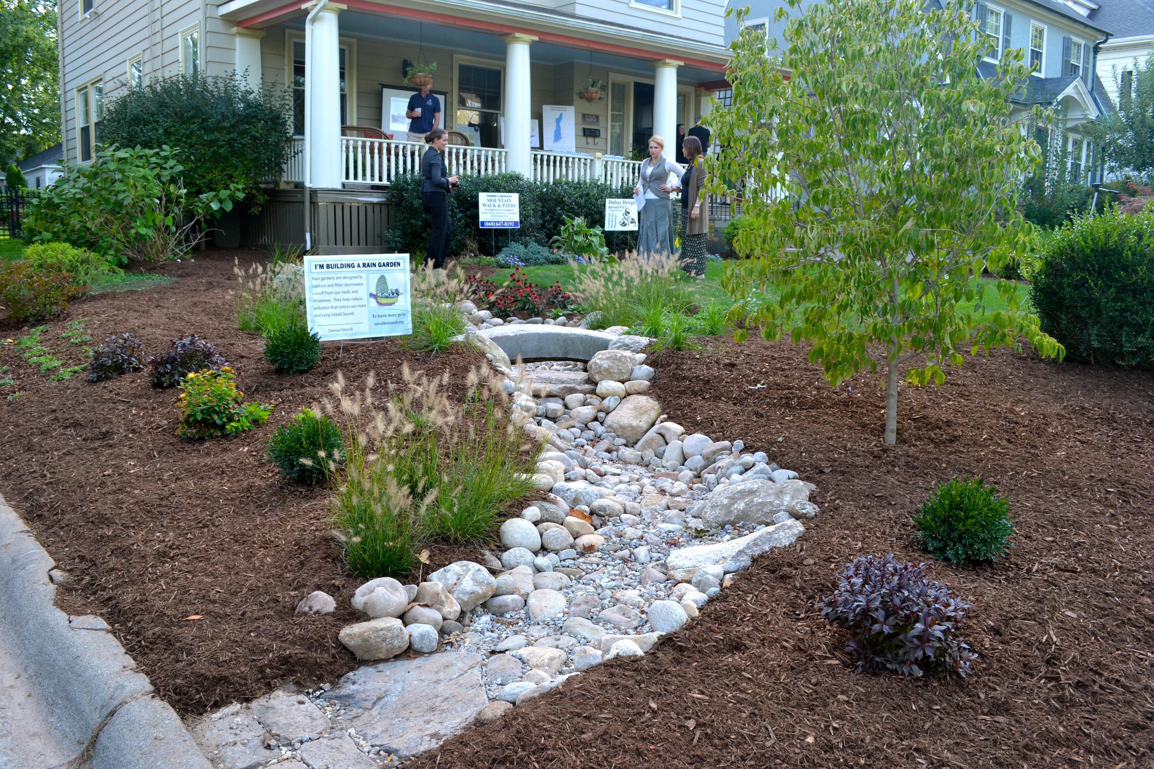 Secretary Merrill's completed rain garden/bioswale as seen from the sidewalk