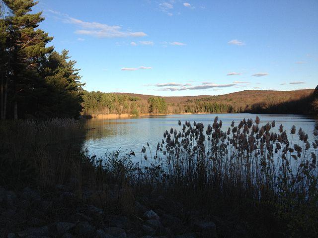 Portland Reservoir, Meshomasic State Forest