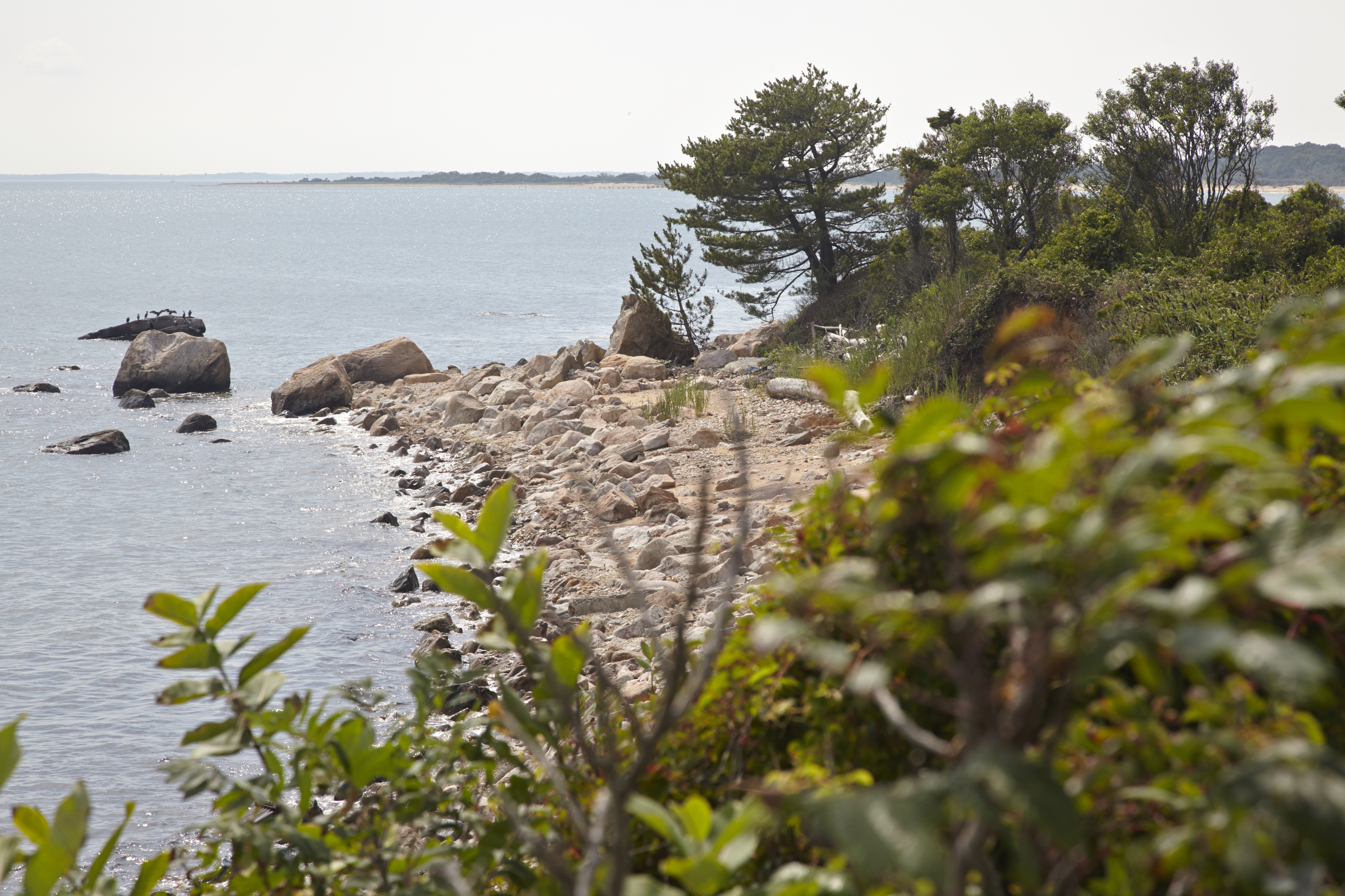 A view of Plum Island. Photo credit Bob Lorenz.