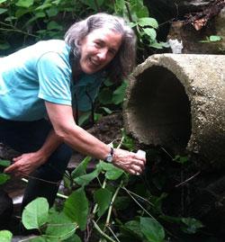 Cathy-Desmond-volunteer