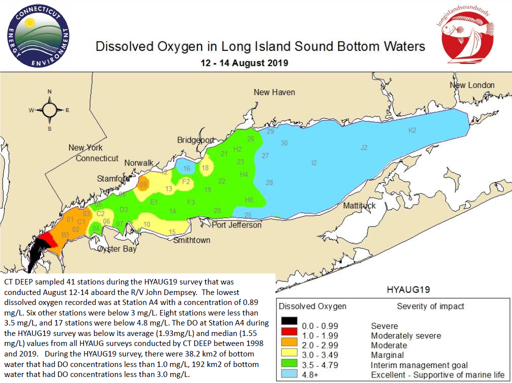 Map showing the extend and severity of low-oxygen conditions in August 2019